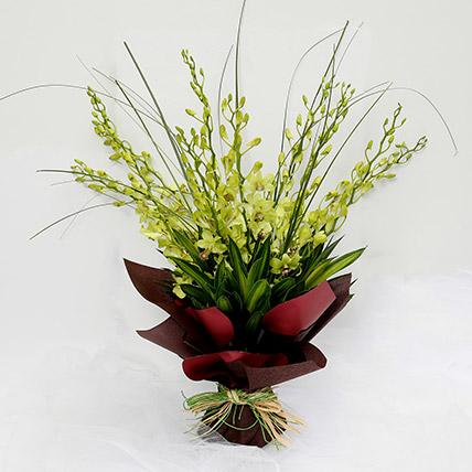 10 Green Mokara Orchids Bouquet: Orchids Flowers