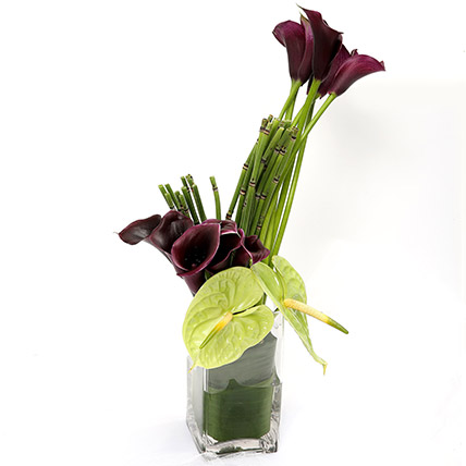 Exotic Calla Lilies and Anthurium Arrangement: Gift Delivery on Same Day
