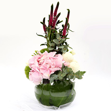 Hydrangea and Veronicas Exotic Flower Arrangement: Gifts For Teen Boys