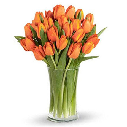 Orange Tulip Collection: CNY Flowers