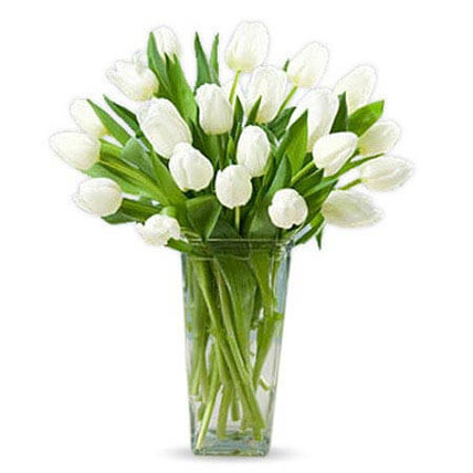 20 White Tulips: Funeral Flowers