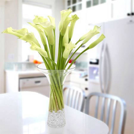 Gracious Lily: Calla Lily Flowers