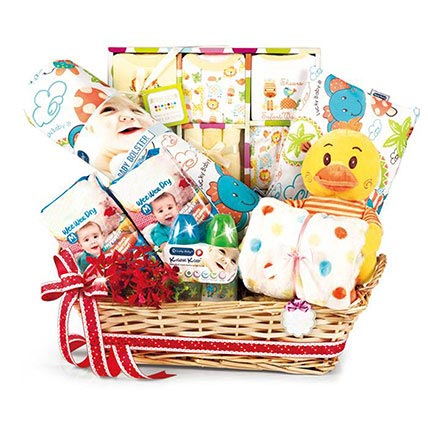 Comfy Baby Gift Hamper: New Born Gifts