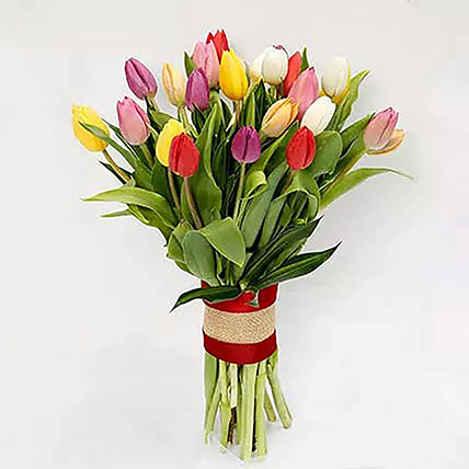 25 Vibrant Tulips Bunch: Flower Bouquets