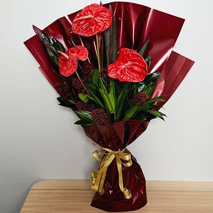 Beautiful Anthurium Bouquet: Anthurium Plant