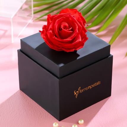 Forever Red Rose With Black Box: Happy Birthday Flowers