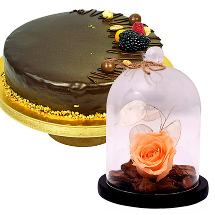 Chocolate Cake & Peach Forever Rose In Glass Dome: Flowers With Cake