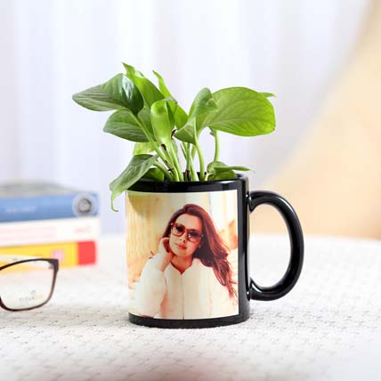 Money Plant Black Picture Mug Combo: Womens Day Personalised Gifts