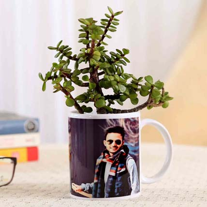 Picture White Mug Jade Plant Combo: Personalised Gifts Singapore