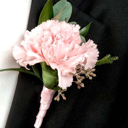 Delicate Pink Carnations boutonniere: Carnations Bouquets