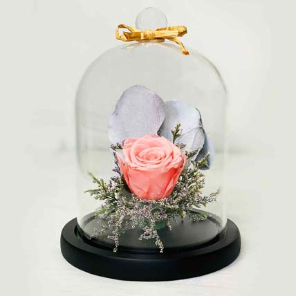 Forever Rose In Glass Dome- Pink: Pink Flowers