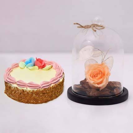 Peach Forever Rose In Glass Dome & Mini Cheese Cake: Forever Roses