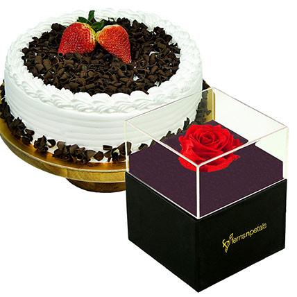 Black Forest Cake & Forever Red Rose With Black Box: Black Forest Cake