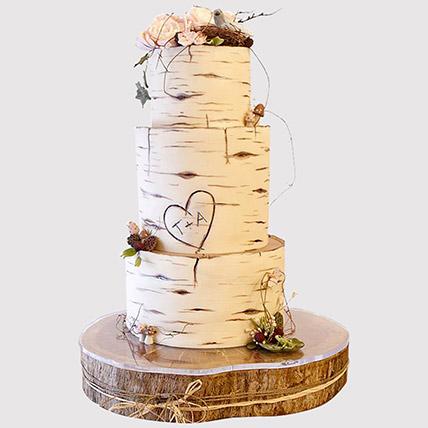 Pretty 3 Layered Engagement Cake: 2 Tier Cake