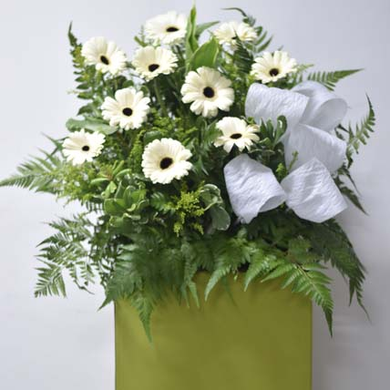 White Gerberas Flower Stand: Sympathy and Funeral Flowers
