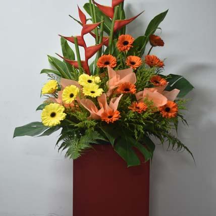 Birds Of Paradise: Congratulations Flowers Singapore