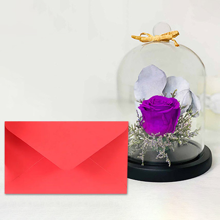 Forever Purple Rose With Greeting Card: Send Greeting Card with Flowers