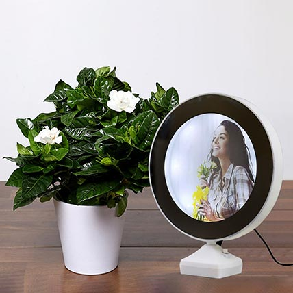 Gardening Jasmine Plant With Personalised Magic Led Mirror: Gift Combos