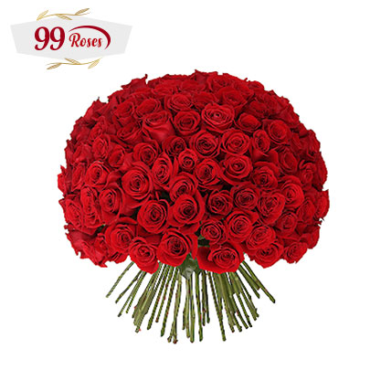Vibrant Red Roses Bouquet: 99 Roses