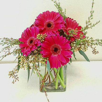 Dark Pink Gerberas Glass Vase Arrangement: Gerberas Bouquet