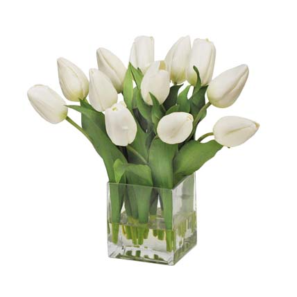 Peaceful White Tulips Square Glass Vase: Sympathy and Condolence Flowers