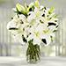 Serene Arranagement Of White Lilies