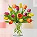 Heavenly 15 Multicoloured Tulips Vase