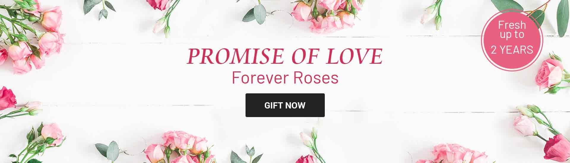 Forever Roses Online