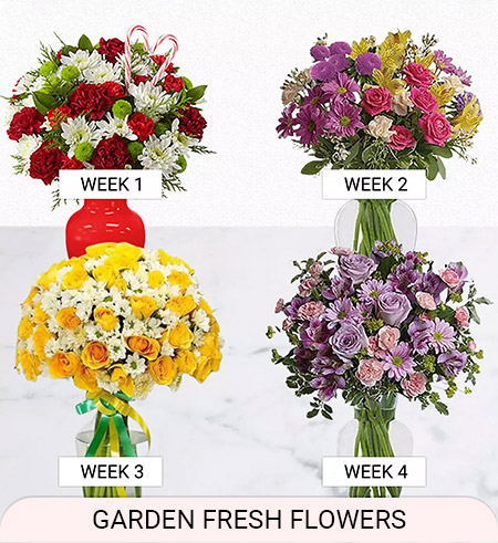 fresh flowers weekly delivery