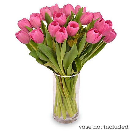 20 Pale Pink Tulips Bunch