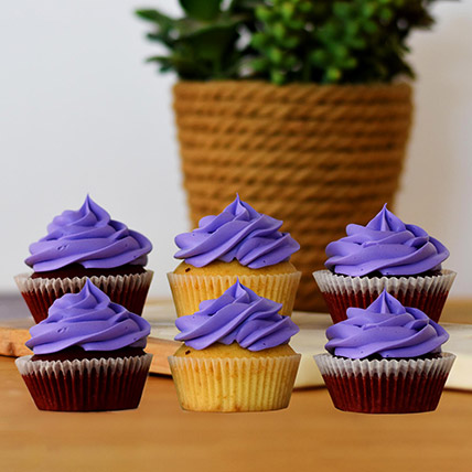 Mouth Watering Chocolate Cupcakes 6 Pcs