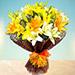 Sunny Asiatic Lilies EG