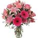 Bunch of Mixed Pink Flowers