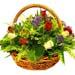 Basket of Undefined Charm