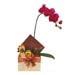Potted Orchid With Festive Hamper