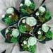 Succulent Chocolate And Vanilla Cupcakes Bouquet
