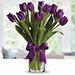 20 Purple Tulip Arrangement