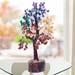 5 Chakra of Wish Tree